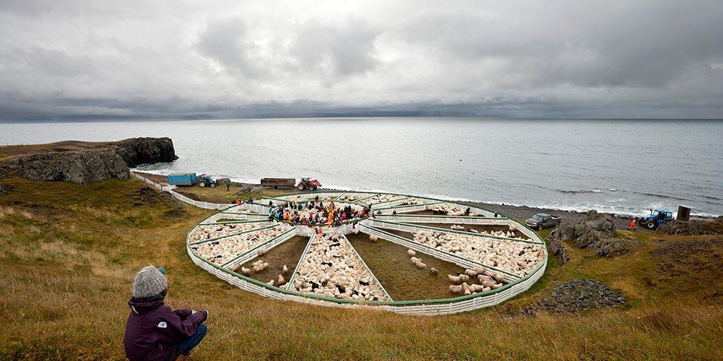 Matarauður, Hamarsréttir á Vatnsnesi